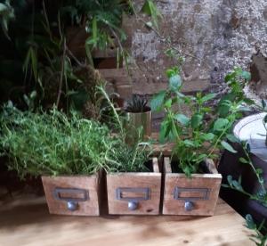 rustic barn props scotland