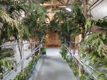 kinkell_byre_forest_entranceway